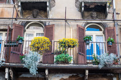 Balcony full of flowers in the erba square in Verona Royalty Free Stock Photography