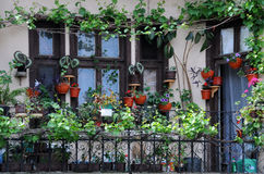 Balcony Garden Stock Images