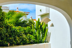 Balcony with greens. Terrace with the balcony which grew with decorative green plantings under an arch Royalty Free Stock Images
