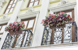 Balcony with neo classic facade and flowers. Stock Photos