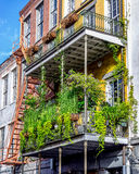Balcony with Plants 11 in the French Quarter New Orleans USA Royalty Free Stock Image