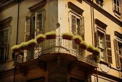 Balcony with plants, Turin, Italy royalty free stock photos