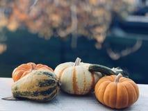 Balcony pumpkin Royalty Free Stock Image