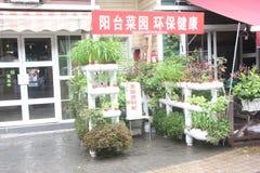 The balcony vegetable garden design Royalty Free Stock Photos