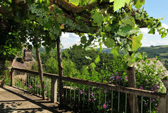 Balcony with view. Idyllic picture of a fenced terrace overgrown with grapes. The garden is located in the small town of La Vinzelle, Cantal/Aveyron, France and Royalty Free Stock Photo