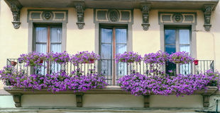 Balcony with violet flowers Royalty Free Stock Photography