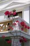 Balcony with wisteria flowers Stock Images