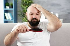 Bald adult man with hair brush. At home stock image