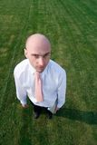 Bald businessman on grass Stock Images