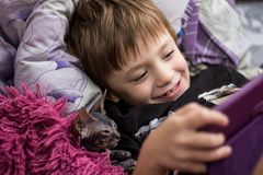 A little boy with a bald cat Sphinx lie in bed under a red blanket and look at the tablet royalty free stock image