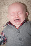 Bald Crying Baby Stock Photography