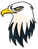 Bald Eagle. Head of the Bald Eagle - symbol of the United States of America vector illustration