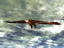 Bald eagle. Three dimensional rendering of a bald eagle in flight Royalty Free Stock Photos