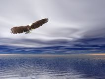 Bald Eagle. Illustrated surreal bald eagle flying over sea Royalty Free Stock Photos