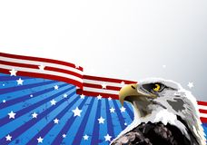 Bald Eagle American Flag. Bald eagle in front of an American flag Stock Images