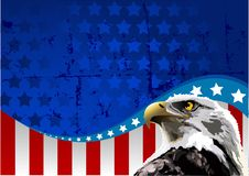 Bald Eagle American Flag. Bald eagle in front of an American flag Stock Photo