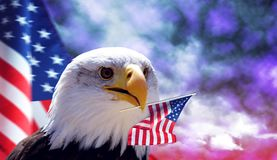 Bald Eagle and American flag. Bald Eagle and American flag with dark storm clouds at the background royalty free stock photo