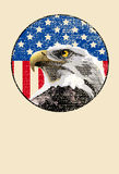 Bald Eagle American Flag Stock Photo