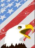 Bald Eagle on American flag Stock Photos