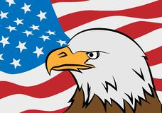 Bald eagle with American flag stock illustration