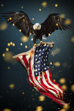 Bald Eagle with American flag. North American Bald Eagle with American flag Stock Image