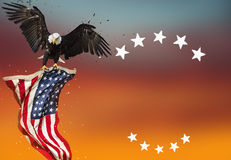Bald Eagle with American flag. North American Bald Eagle with American flag Stock Photos