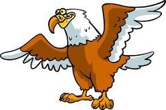 Bald eagle big ferocious mighty animal. Rare extinction bird cartoon funny cute Royalty Free Stock Images