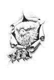 Bald eagle. Breaks through wall paper. Pencil illustration stock illustration