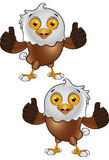 Bald Eagle Character Royalty Free Stock Photo