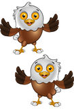Bald Eagle Character Stock Photo