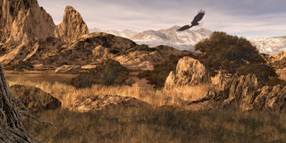 Bald Eagle in the Colorado Rockies. Image from an original 12x24 painting of a bald eagle soaring in the Colorado Rockies. / SW-015 stock illustration