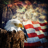 Bald Eagle & Fireworks. Composite photo of a Bald Eagle with a flag and fireworks in the background. Given a grunge overlay for a nice aged effect. Nice stock photo