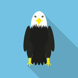 Bald Eagle in a flat design with long shadow Stock Images