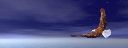 Bald eagle flying - 3D render. Bald eagle flying in deep blue sky - 3D render Stock Photo