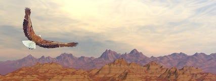 Bald eagle flying upon rocky mountains - 3D render. Bald eagle flying upon rocky mountains by sunset light - 3D render vector illustration