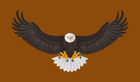 Bald Eagle flying, Vector illustration Stock Photography