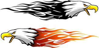 Bald Eagle Head Flame. Fierce Eagle in different variations with speeding flame trail stock illustration