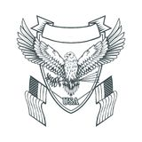 Bald eagle logo. Wild birds drawing. Head of an eagle. Vector graphics to design Royalty Free Stock Image