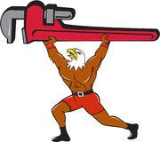 Bald Eagle Plumber Monkey Wrench Isolated Cartoon Royalty Free Stock Images
