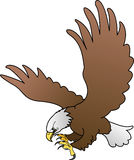 Bald eagle with spread wings. Illustration of bald eagle with spread wings Stock Photo