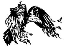 Bald eagle vector. Flying eagle illustration - swooping bird black and white outline Stock Images