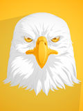 Bald Eagle Vector Stock Photo