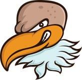 Bald Eagle or Vulture Head Cartoon Royalty Free Stock Image