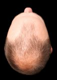 Bald Head Cut-out Royalty Free Stock Photography