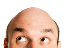 Bald head isolated. Bald head looking up isolated Royalty Free Stock Image