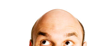 Bald head isolated. Bald head looking up isolated Royalty Free Stock Photo