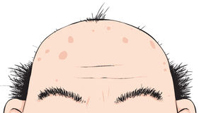Bald head Man Cartoon Character Royalty Free Stock Photo