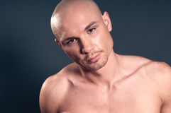 Bald man. Studio portrait of shirtless muscled bald man Royalty Free Stock Image