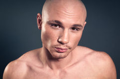 Bald man. Studio portrait of shirtless muscled bald man Royalty Free Stock Photos