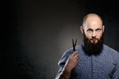 Bald man with a beard wearing a blue shir. T is holding a pair of scissors stock photos